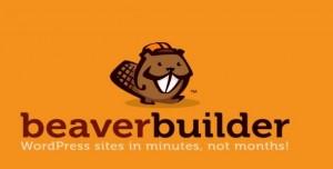 Beaver Builder Pro v2.3.1.1