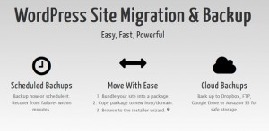 Duplicator Pro v3.8.6.1 - WordPress Site Migration & BackUp