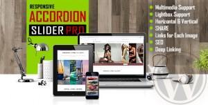 Accordion Slider PRO v1.0.2.1 - Responsive Image And Video Plugin