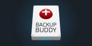 BackupBuddy v8.5.9.0 - Back up, restore and move WordPress