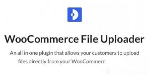 WooCommerce AJAX File Upload (600+ filetypes) v2.0.2