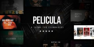 PELICULA V1.0 - VIDEO PRODUCTION AND MOVIE THEME