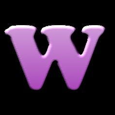 WP SCRIPT